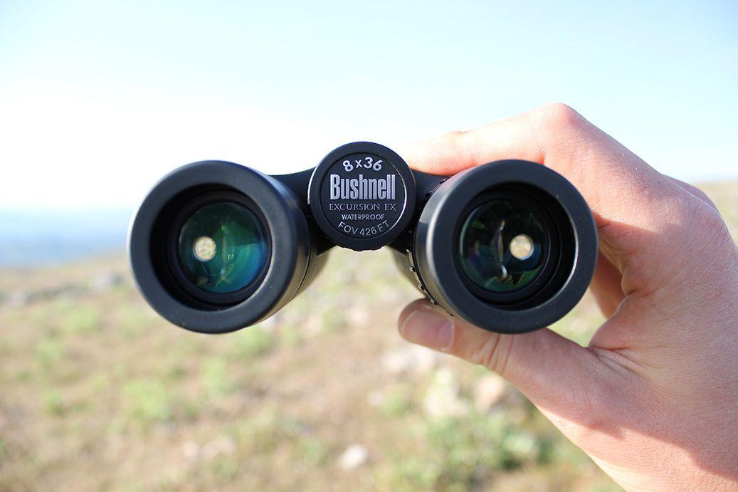Diferencia entre prismáticos, catalejos y telescopio